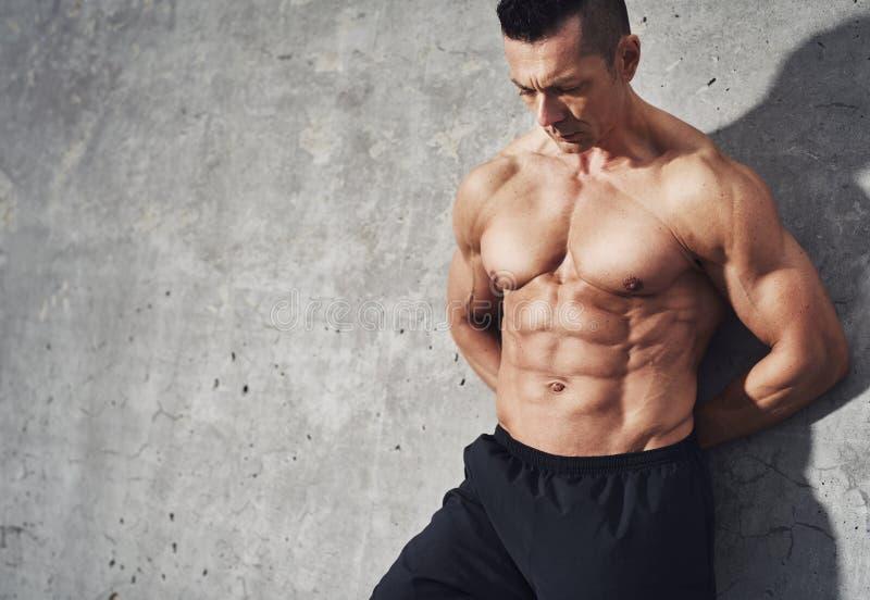 L'ajustement et la forme physique musculaire saine modèlent l'homme masculin photographie stock libre de droits