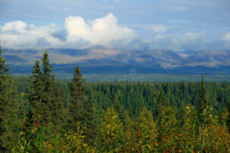 L'Alaska fotografie stock libere da diritti