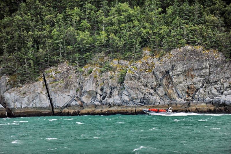 L'Alaska dal lato di una nave da crociera immagine stock libera da diritti