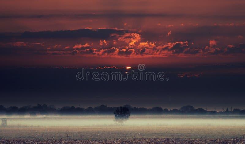 L'alba colora l'autunno fotografie stock