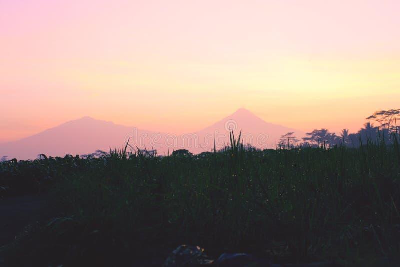 L'alba di mattina vede la bellezza della natura immagini stock