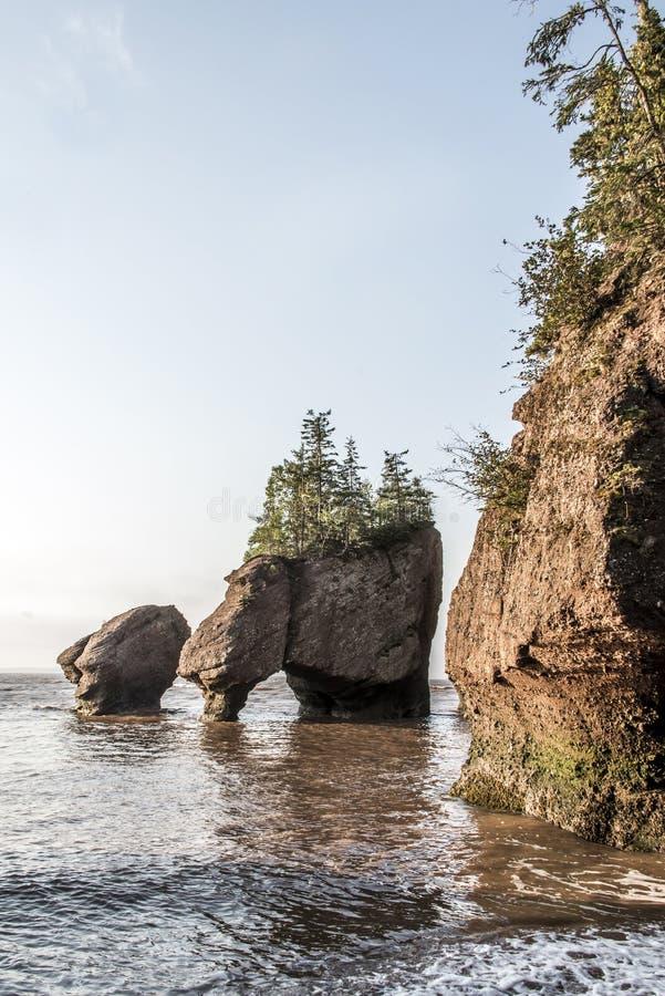 L'alba Hopewell famoso oscilla le formazioni geologigal alla più grande baia Nuovo Brunswick Canada di Fundy dell'onda di marea d fotografie stock