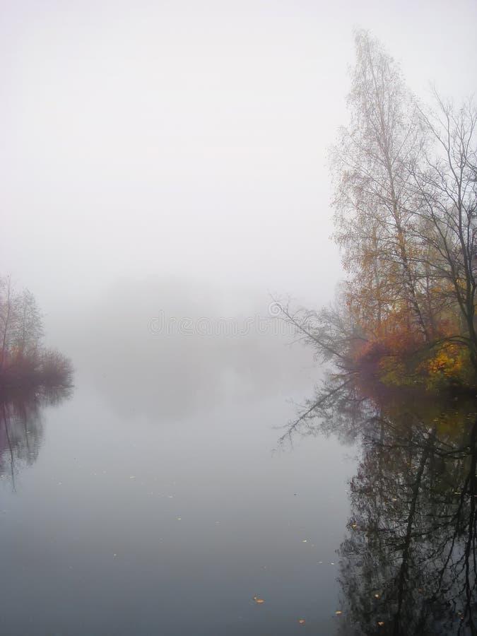L'alba nebbiosa, foresta di autunno in nebbia mistica di mattina, lago all'alba con le nuvole ha riflesso nell'acqua calma, densa immagine stock