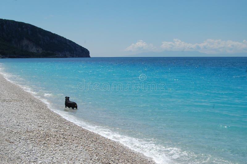 L'Albanie, plage de Dhermi image stock