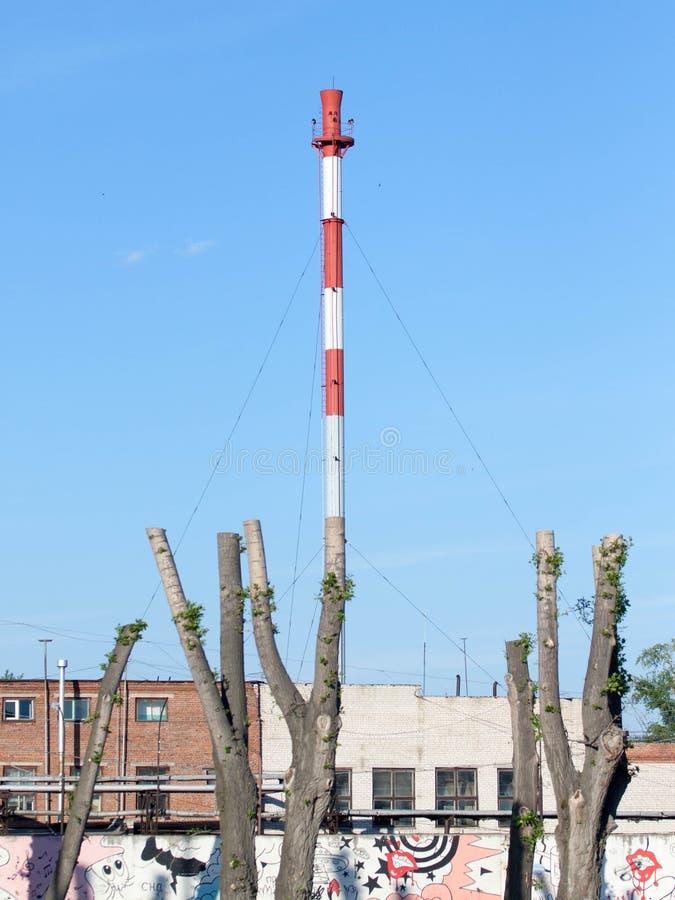 L'albero come camino della fabbrica immagini stock libere da diritti