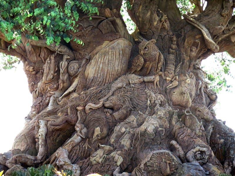 L'albero della vita nel parco di regno animale, mondo di Disney, Flori immagine stock libera da diritti