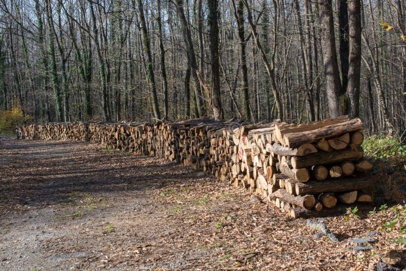 L'albero di legno del fuoco registra i tronchi di riserva accatastati su fotografia stock libera da diritti