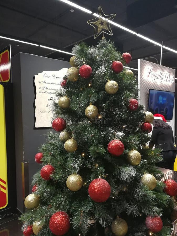 L'albero di Natale! fotografia stock libera da diritti
