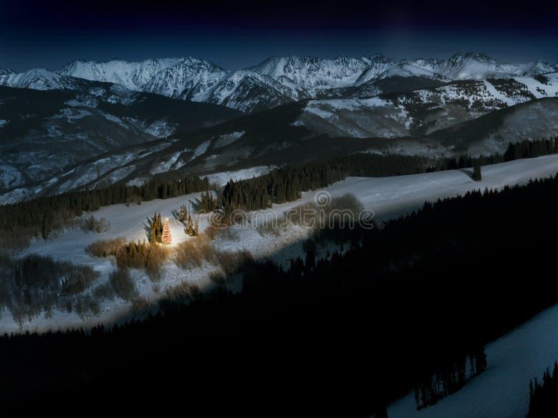 L'albero di Natale della montagna di Lit emette luce brillantemente in neve alla notte immagine stock