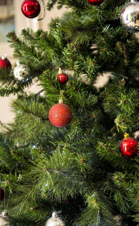 L'albero di Natale verde e rosso fotografia stock libera da diritti