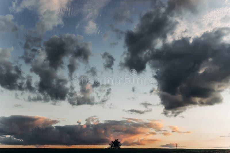 L'albero e le nuvole che stupiscono il tramonto si accendono in cielo nella sera dell'estate B immagine stock libera da diritti