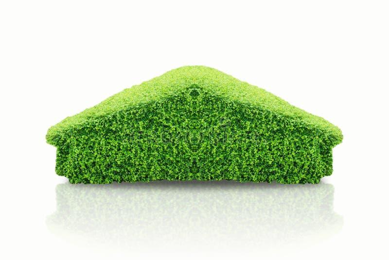 L'albero verde sotto forma di casa ed il cespuglio nella forma domestica, nel concetto come riscaldamento globale, nella terra di fotografie stock