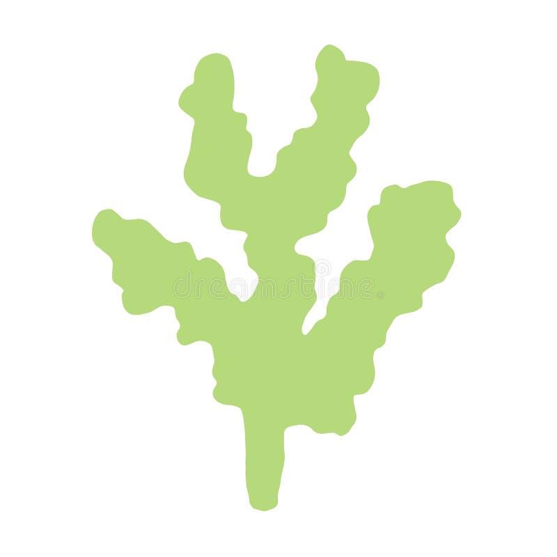 L'alga è immagine fatta a mano isolata Su una priorità bassa bianca illustrazione di stock