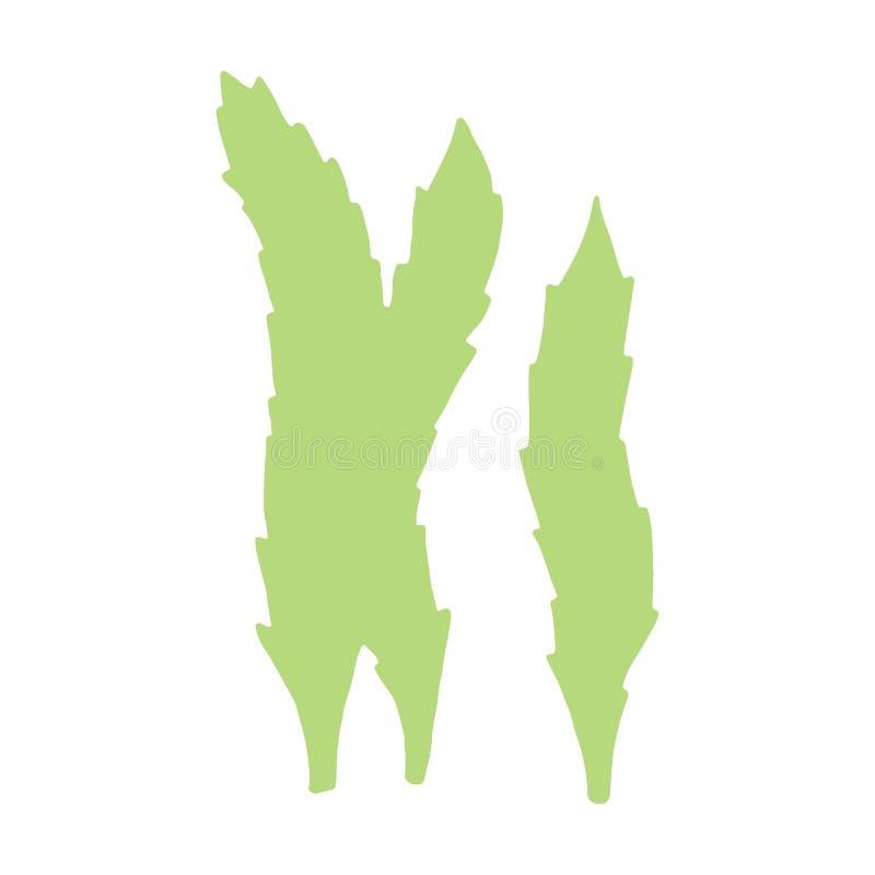 L'alga è immagine fatta a mano isolata Su una priorità bassa bianca La VE illustrazione vettoriale