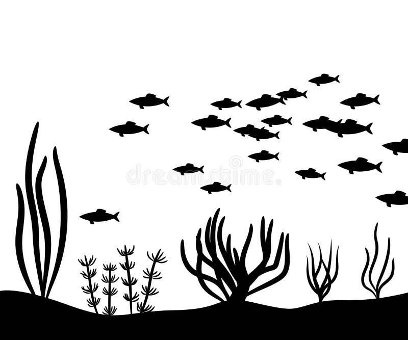 L'alga al fondo del mare e la scuola pescano la siluetta di vettore royalty illustrazione gratis