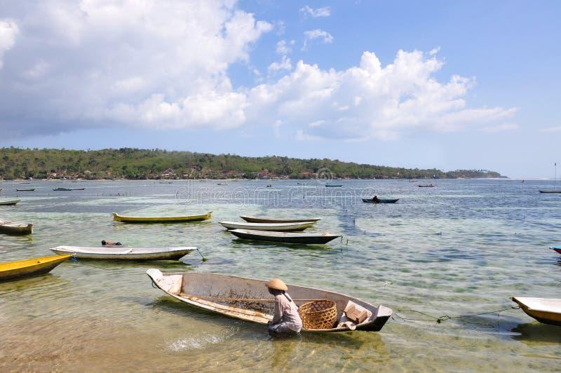 L'alga sistema, campo dell'azienda agricola in isola, Indonesia fotografia stock
