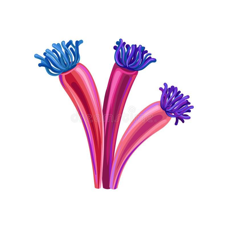 L'alga subacquea, alghe marine acquatiche pianta l'illustrazione di vettore illustrazione vettoriale