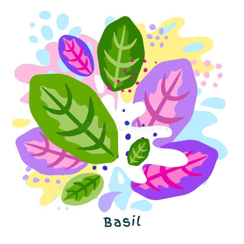 L'alimento biologico rosso verde fresco della spruzzata del succo di verdura del basilico su coloful astratto schizza il vettore  illustrazione di stock