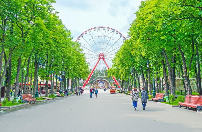 L'allée centrale du parc de Gorki photos libres de droits