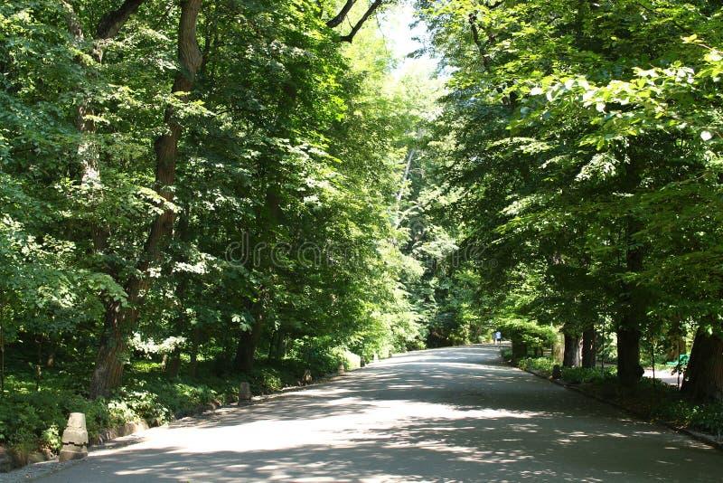 L'allée principale en parc de Sofiyivsky Jardin botanique dans Uman, Ukraine photographie stock