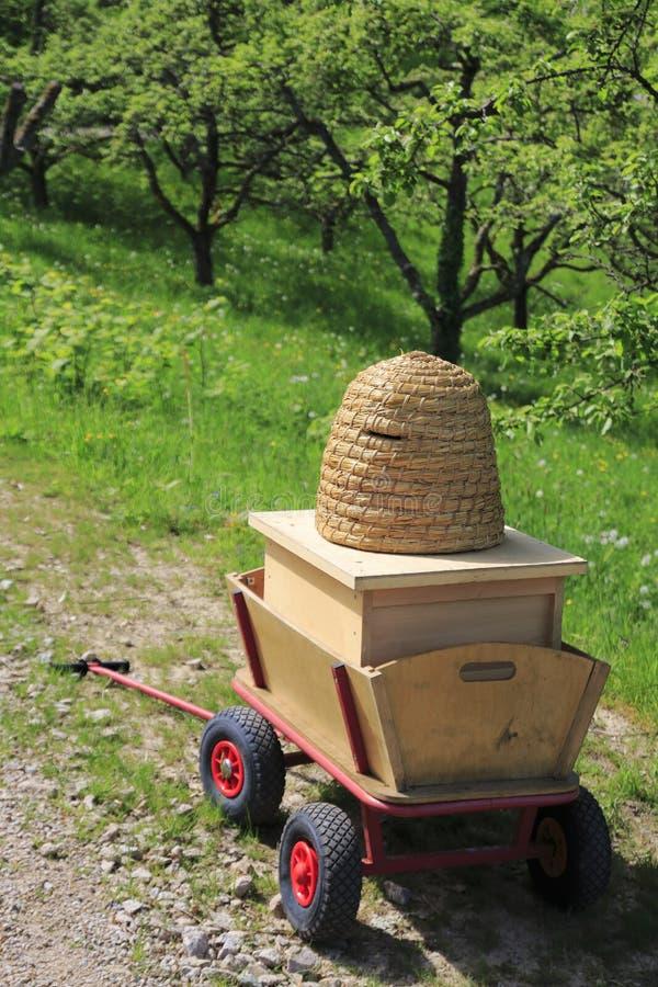 L'alveare sta solo su un prato nella proprietà della frutta in Baden-Baden immagine stock