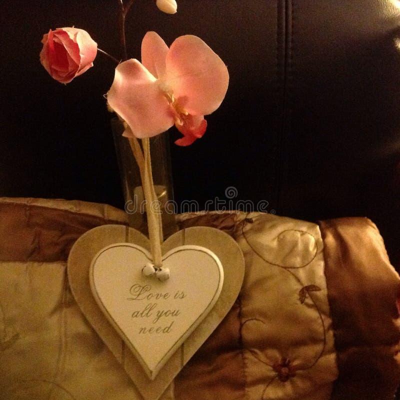 L'amore è tutto il bisogno di u fotografia stock libera da diritti