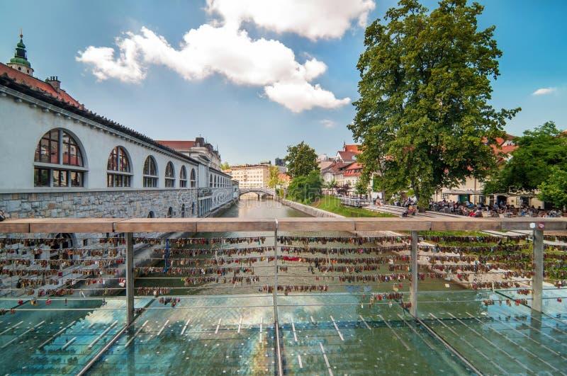 L'amore padlocks sul ponte del macellaio, Transferrina, Slovenia immagini stock