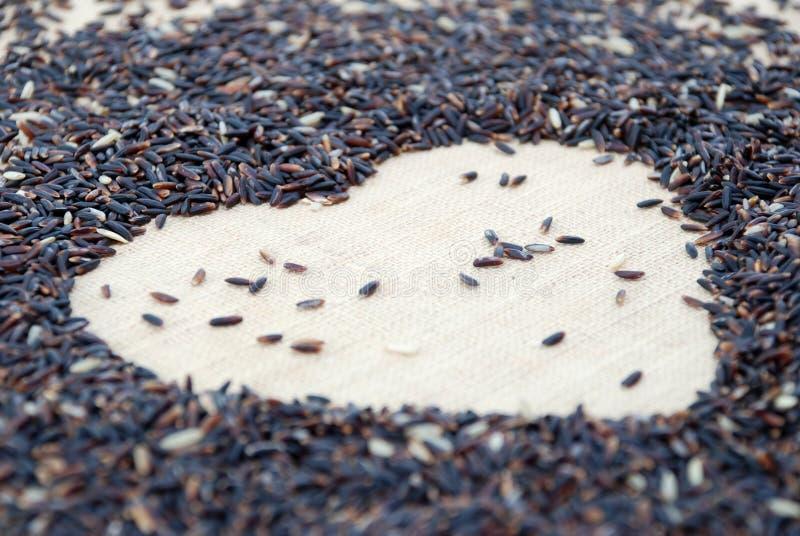 L'amour est (le riz de jasmin) photos stock