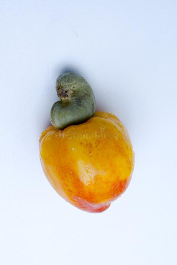 L'ANARCADIER EST UN FRUIT TROPICAL photos libres de droits
