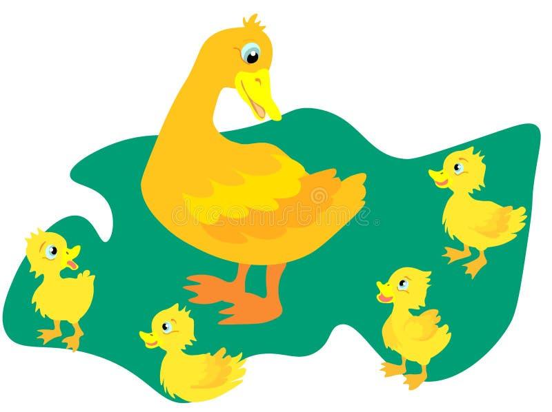 L'anatra selvatica di web A con le piccole anatre cammina allo stagno Un'anatra con i piccoli anatroccoli nuota sull'acqua Illust royalty illustrazione gratis