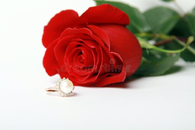 L'anello con la perla ed il colore rosso è aumentato immagine stock libera da diritti