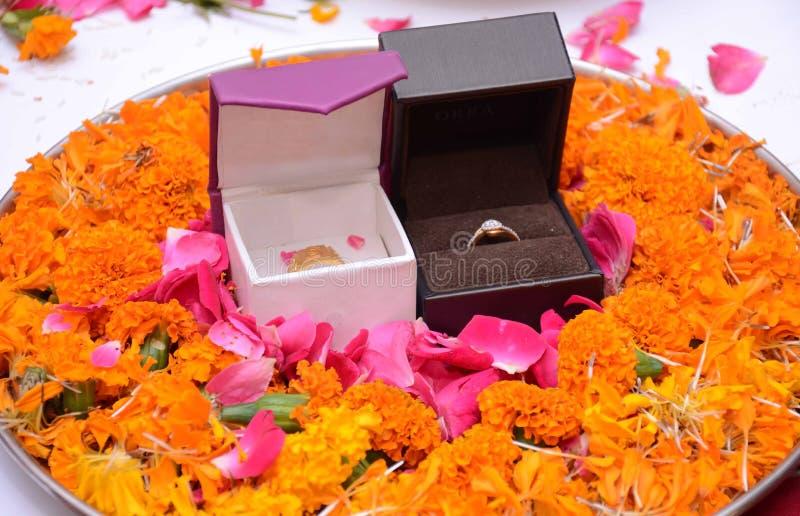 L'anello -01 immagine stock