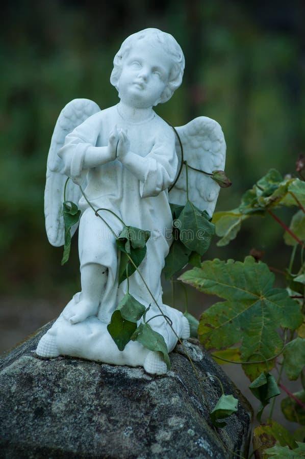 L'ange lapidé avec le lierre part sur la tombe dans un cimetière photos libres de droits