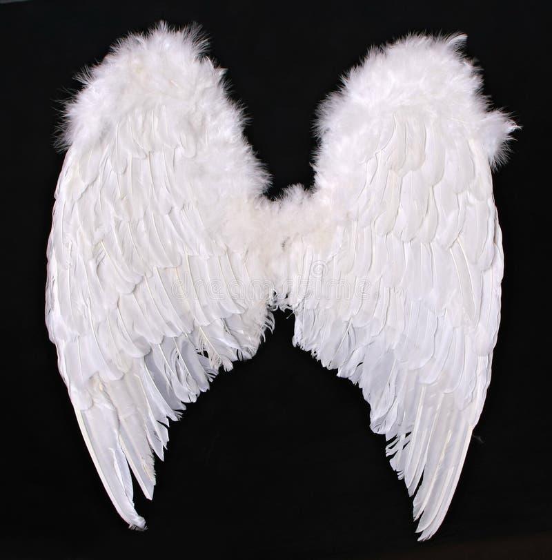 L'angelo adulto traversa il puntello volando di fotographia fotografia stock libera da diritti