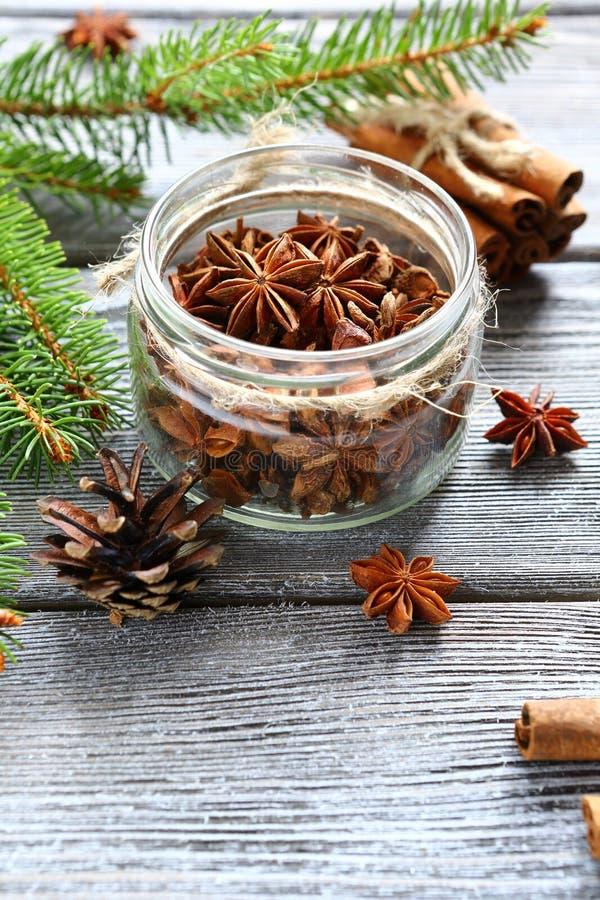 L'anice e la cannella aromatici con il pino si ramifica sui bordi immagini stock
