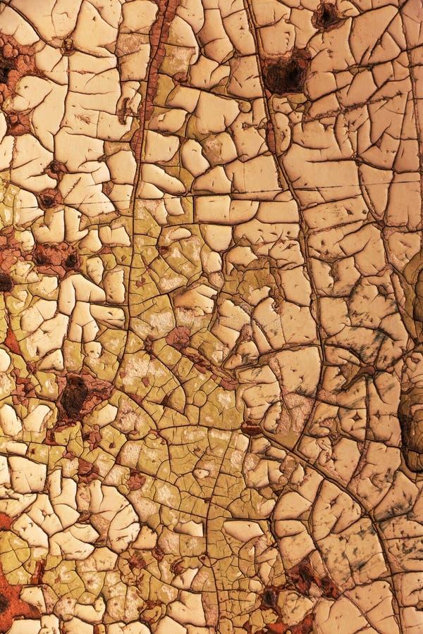 L'annata ha dipinto la struttura di legno del fondo della parete rustica stagionata di legno con la pittura della sbucciatura Spa immagini stock
