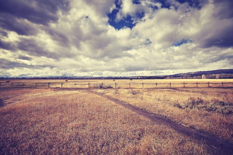 L'annata ha tonificato il paesaggio pacifico, Wyoming, U.S.A. fotografia stock libera da diritti