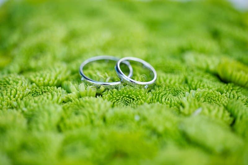 L'anneau de mariage sur le vert fleurit le fond images libres de droits