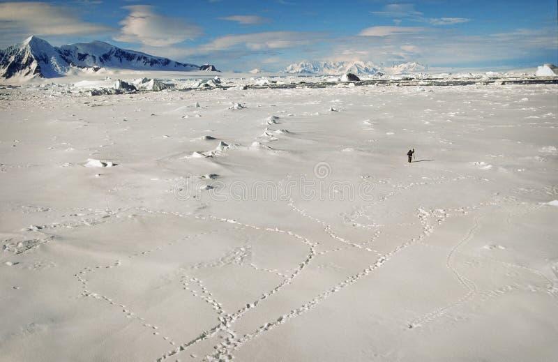 l'Antarctique, horizontal de neige et de glace photo libre de droits