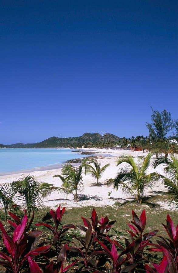 L'Antigua, des Caraïbes images stock