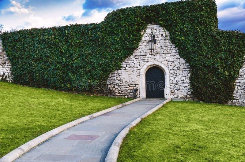 L'antiquité a arqué les portes en fer forgé dans un vieux mur en pierre de forteresse utilisant le lierre luxuriant vert Belle images libres de droits