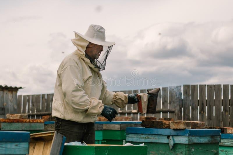L'apiculteur dans une tenue de protection fumige des ruches photo stock