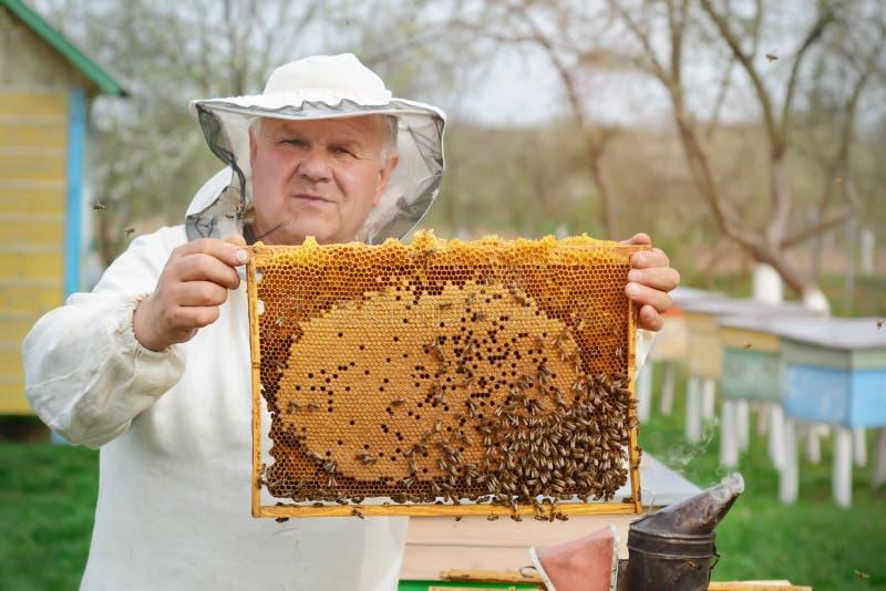 L'apiculteur travaille à une ruche près des ruches Travail de ressort sur le rucher photos stock