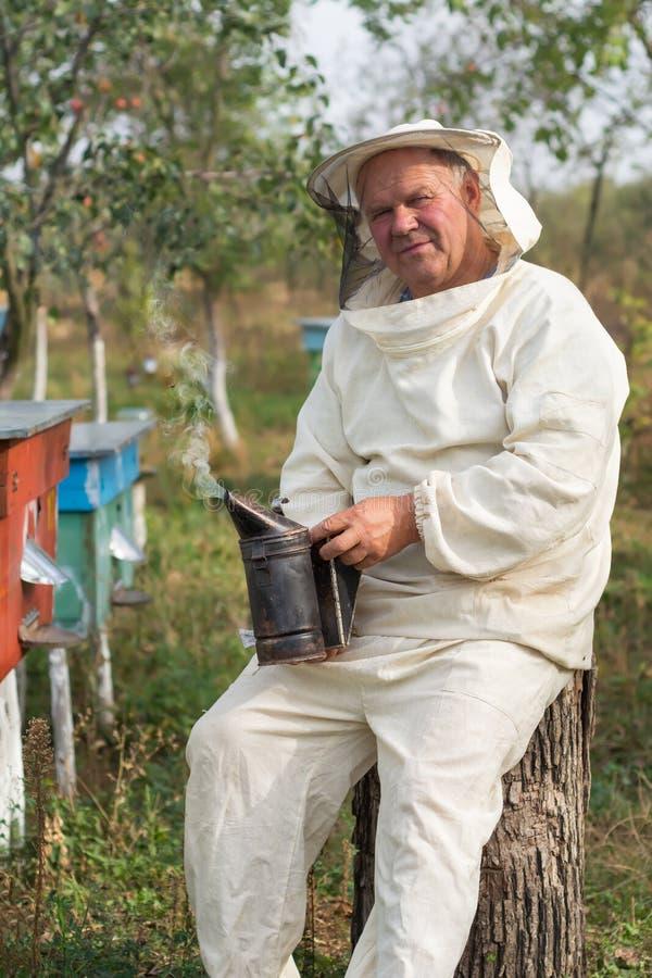 L'apiculteur travaille avec des abeilles et des ruches sur le rucher photographie stock libre de droits