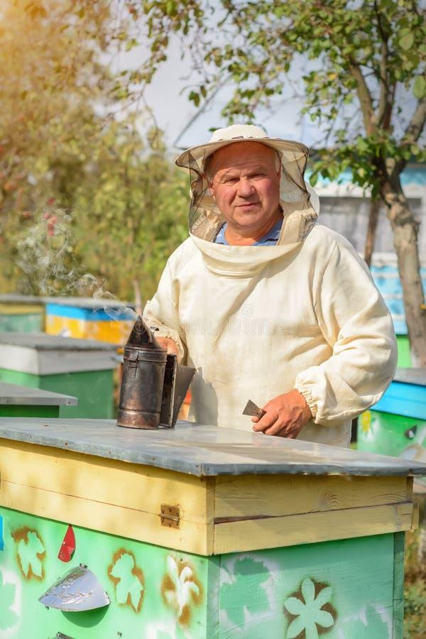 L'apiculteur travaille avec des abeilles et des ruches sur le rucher Apiculteur sur le rucher Apiculture photographie stock libre de droits
