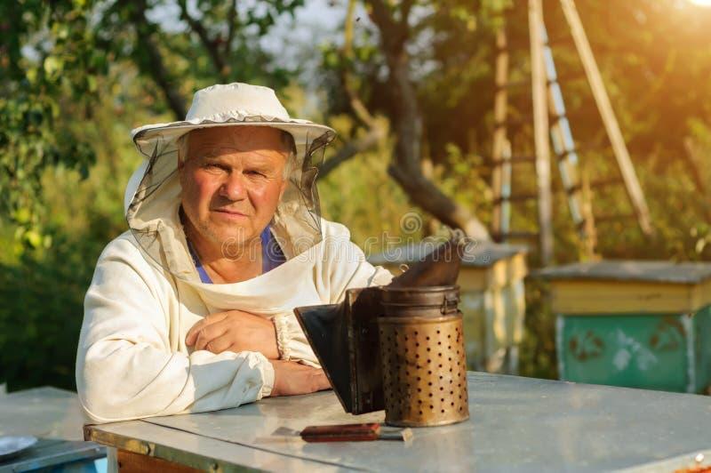 L'apiculteur travaille avec des abeilles et des ruches sur le rucher Apiculture photo stock