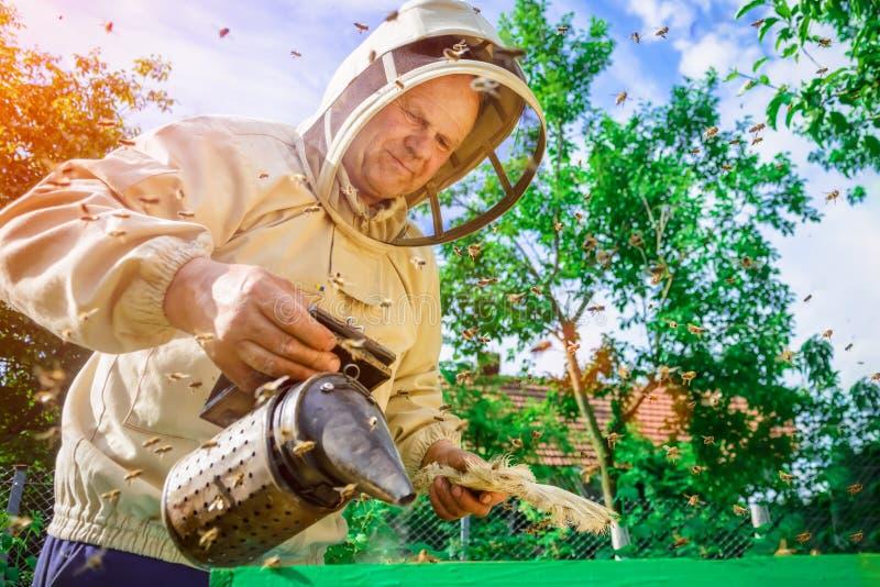 L'apiculteur travaille avec des abeilles près des ruches Apiculture images stock