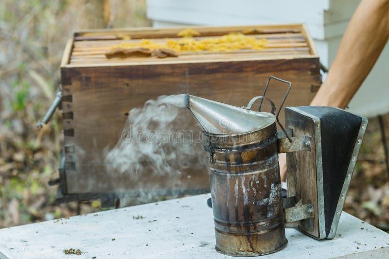 l'apiculture L'apiculteur traite une ruche en bois avec de la fumée d'abeilles image libre de droits