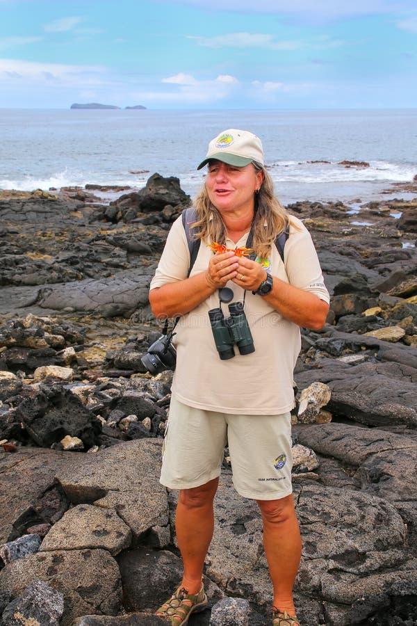 L'apparence de guide de naturaliste a jeté la coquille du crabe de lightfoot de sortie images stock