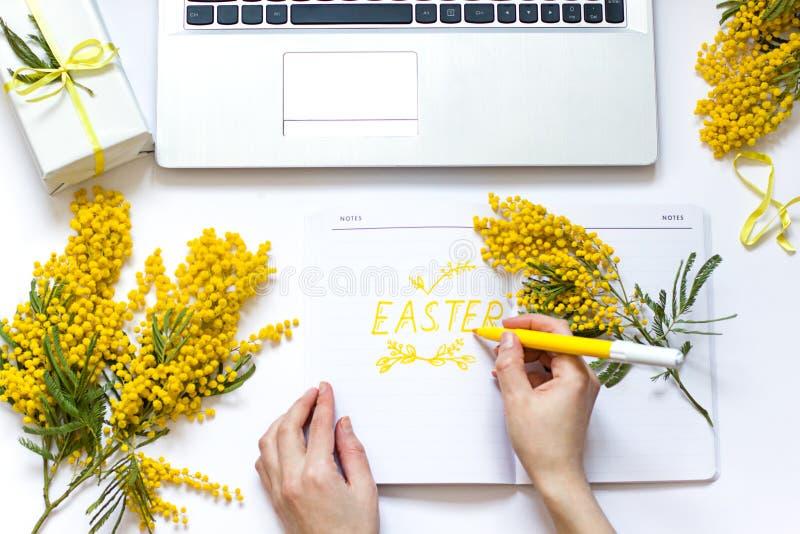 L'appartement de ressort de Pâques s'étendent avec les fleurs jaunes, l'ordinateur portable et une tasse de café La main de la fe photos stock